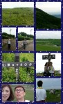 Collage 2014-08-13 13_07_06